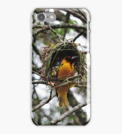 Uganda weaver bird iPhone Case/Skin