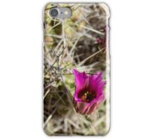 Strawberry Hedgehog Cactus iPhone Case/Skin