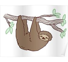 Sloth Climbing a Tree Branch Poster