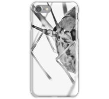 Cave Cricket iPhone Case/Skin