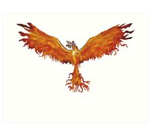 Phoenix Team Art Print