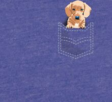 Daschund in a pocket Tri-blend T-Shirt
