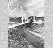 The Bloody Lane, Antietam. Civil war Battlefield. American History.  Unisex T-Shirt