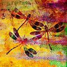 Mauritius Vintage Dragonflies Colours by Vitta