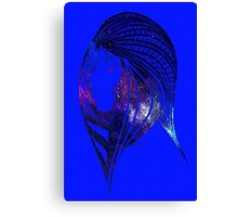 Looking to the Stars Canvas Print