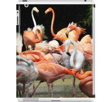 Fab Flamingos iPad Case/Skin