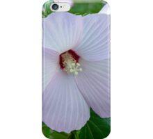 Wild Rose Mallow iPhone Case/Skin