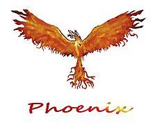 Phoenix Team Photographic Print