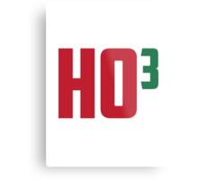 Ho Ho Ho Have A Very Nerdy Christmas Metal Print