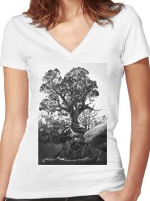 Twisted Trees in Garden of the Gods Women's Fitted V-Neck T-Shirt