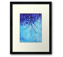 Sky Tree Framed Print