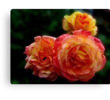 Radiant Roses Canvas Print