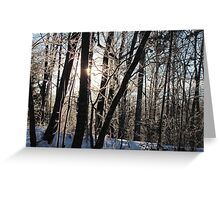 Winter With The Sun Greeting Card