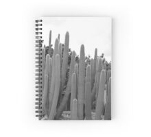 Cacti II Spiral Notebook