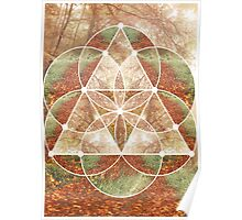 Woodland Abstract Poster