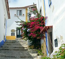A Street in Obidos  - Portugal by Chris Monks