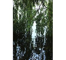 Kissing the water  Photographic Print