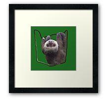 Pocket Sloth Framed Print