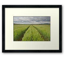 Lothian Lines Framed Print