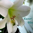 Easter Blessings by Rosemary Sobiera