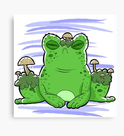 Toadstool Toad  Canvas Print
