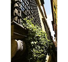 Fortress Window Photographic Print