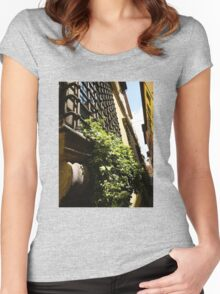 Fortress Window Women's Fitted Scoop T-Shirt