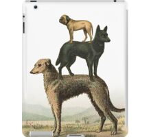 phil jarry - dogs - 003 iPad Case/Skin