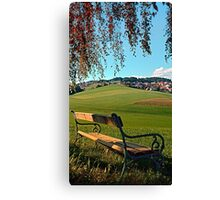 Bench under the tree   landscape photography Canvas Print