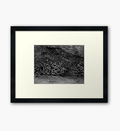 Benson Beach Barnies Framed Print