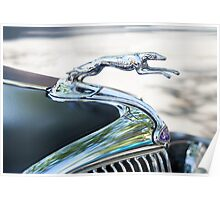 HOOD ORNAMENT FORD Poster