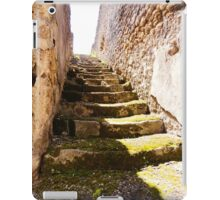 Ruined Stairs iPad Case/Skin