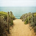 Path to the Beach by LawsonImages