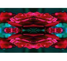 rose print Photographic Print