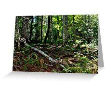 In the Deep, Dark Green Wood II Greeting Card