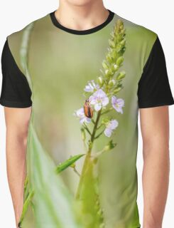 Purple Loosestrife Beetle on a Water Speedwell Flower Graphic T-Shirt