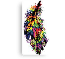 Colorful feather Canvas Print
