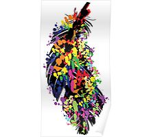 Colorful feather Poster