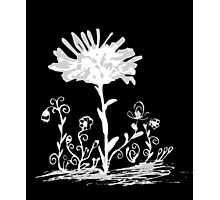 Invert sketch flowers Photographic Print