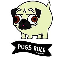 Pugs Rule Photographic Print