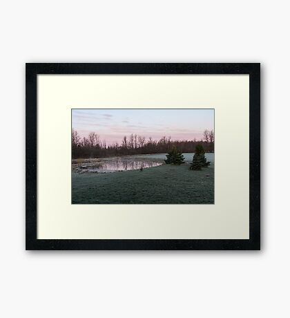 Frosty Morning - Quiet Pinks and Greens at the Pond Framed Print