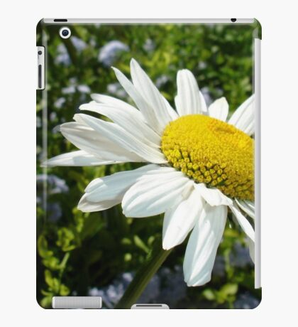 Close Up Common White Daisy With Garden  iPad Case/Skin