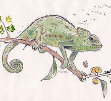 The colourful world of Chameleons by Maree Clarkson