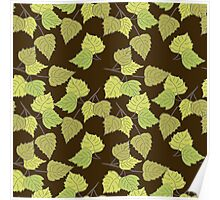 Birch leaves brown background Poster