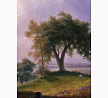 Albert Bierstadt - California Spring (1875)  Unisex T-Shirt