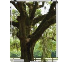 Charleston Trees iPad Case/Skin