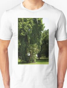 Ancient Trees Unisex T-Shirt