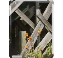 Fences at plantation iPad Case/Skin