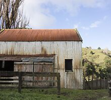 tin shed by Anne Scantlebury