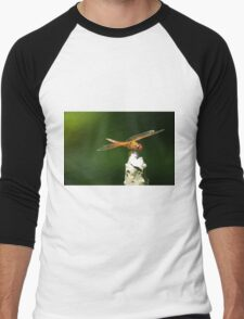 Dragonfly Up There Men's Baseball ¾ T-Shirt